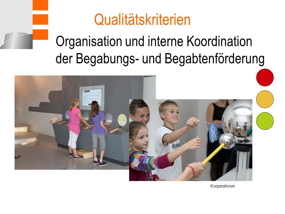 Organisation und interne Koordination der Begabungs- und Begabtenförderung Qualitätskriterien Kooperationen