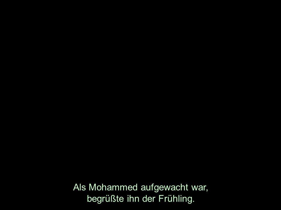 Als Mohammed aufgewacht war, begrüßte ihn der Frühling.