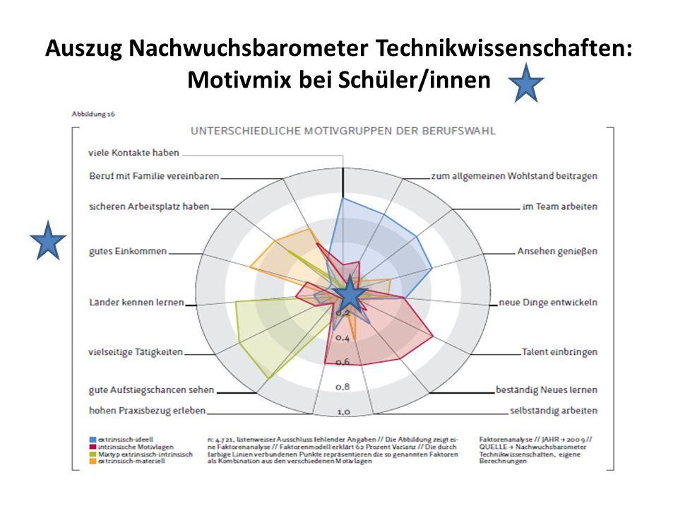 Auszug Nachwuchsbarometer Technikwissenschaften: Motivmix bei Schüler/innen