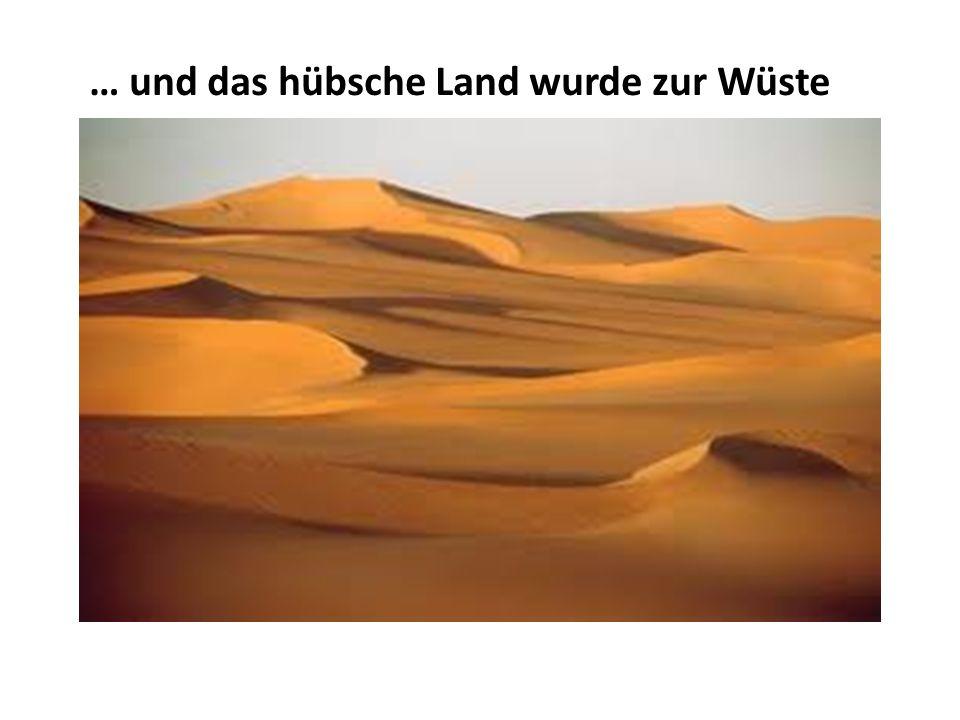 … und das hübsche Land wurde zur Wüste