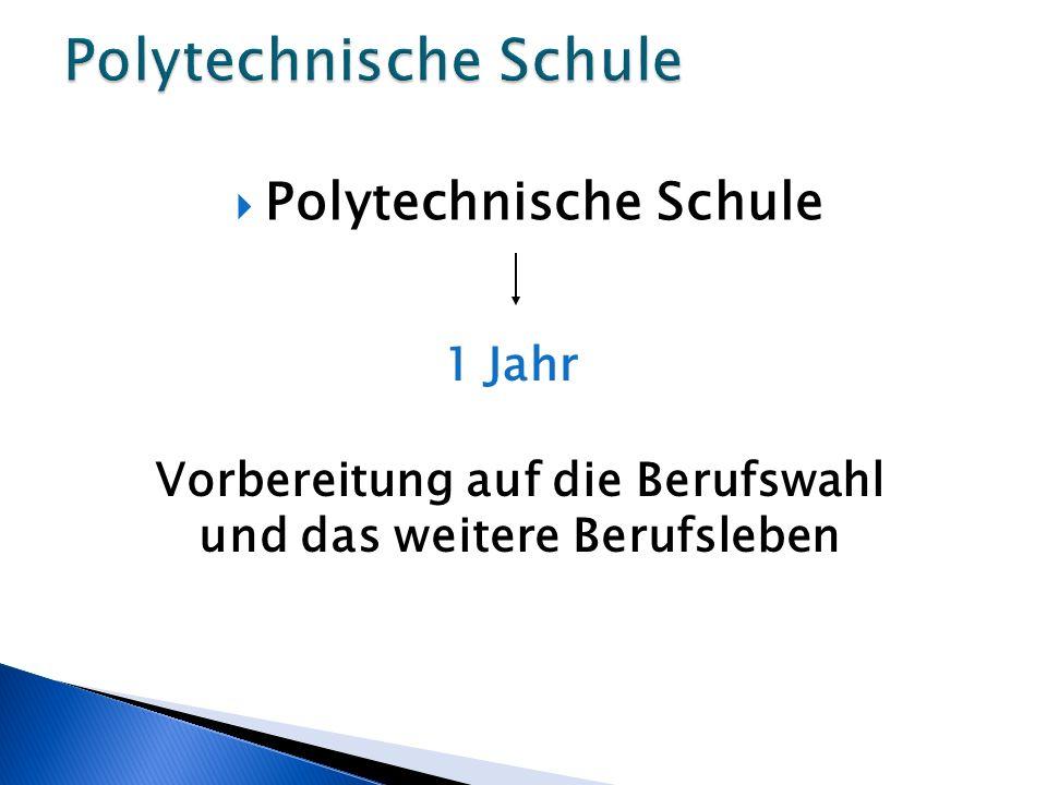 Polytechnische Schule 1 Jahr Vorbereitung auf die Berufswahl und das weitere Berufsleben