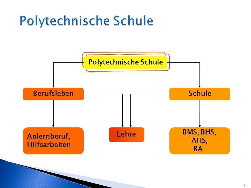 BerufslebenSchule BMS, BHS, AHS, BA Anlernberuf, Hilfsarbeiten Lehre Polytechnische Schule 3