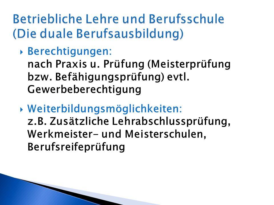 Berechtigungen: nach Praxis u.Prüfung (Meisterprüfung bzw.