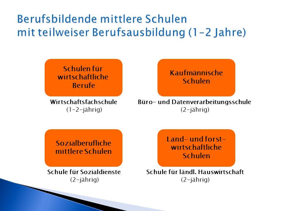 Wirtschaftsfachschule (1–2-jährig) Schulen für wirtschaftliche Berufe Büro- und Datenverarbeitungsschule (2-jährig) Kaufmännische Schulen Schule für l