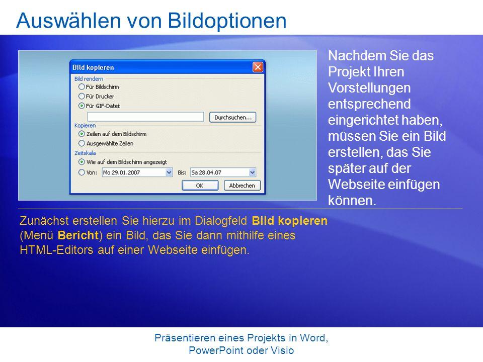 Präsentieren eines Projekts in Word, PowerPoint oder Visio Auswählen von Bildoptionen Nachdem Sie das Projekt Ihren Vorstellungen entsprechend eingeri
