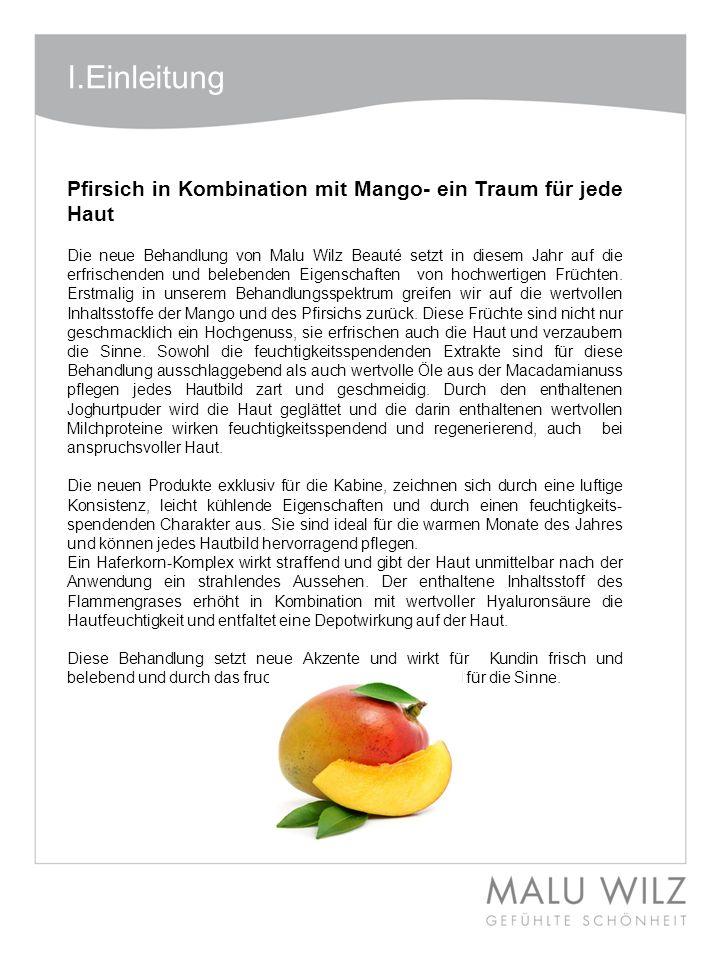 Body- Behandlung Wertvolle Momente für Körper und Geist Moodbild zum Thema I.Einleitung Pfirsich in Kombination mit Mango- ein Traum für jede Haut Die