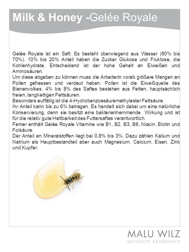 Wie Anfangs bereits erwähnt, werden dem Honig und dessen Wirkstoffen größte Bedeutung bei der Behandlung der Haut zu gesprochen.
