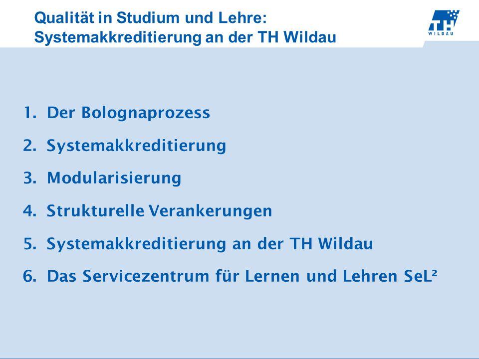 Qualität in Studium und Lehre: Systemakkreditierung an der TH Wildau 1.Der Bolognaprozess 2.Systemakkreditierung 3.Modularisierung 4.Strukturelle Vera