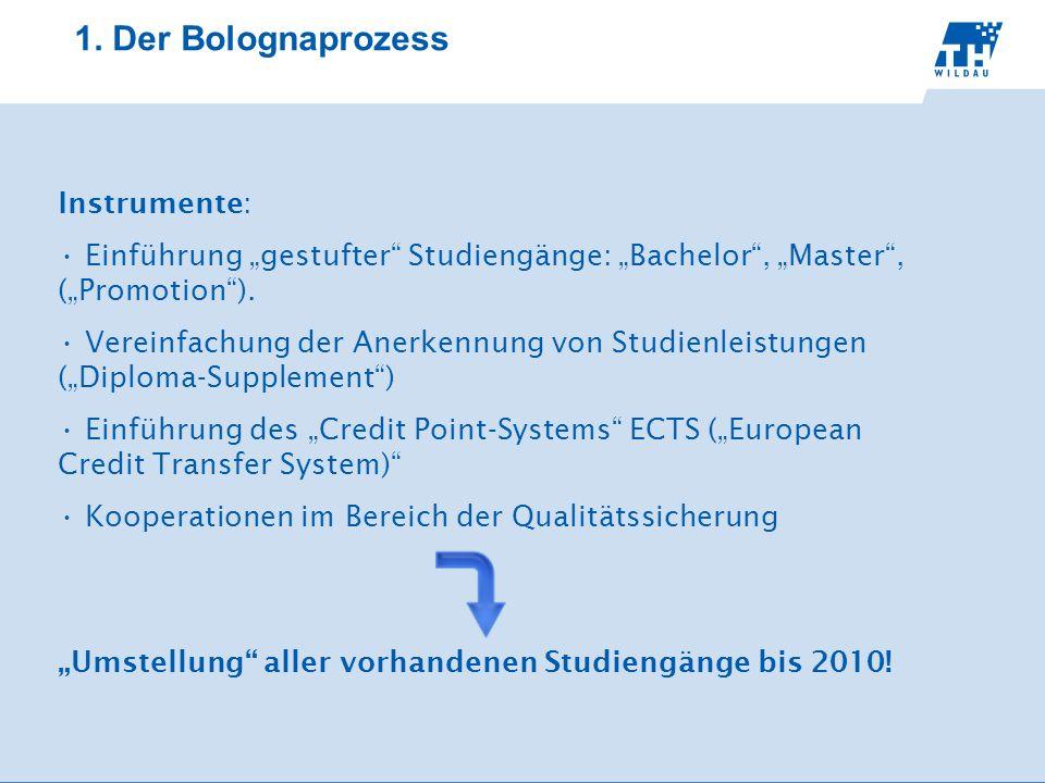 Instrumente: Einführung gestufter Studiengänge: Bachelor, Master, (Promotion). Vereinfachung der Anerkennung von Studienleistungen (Diploma-Supplement