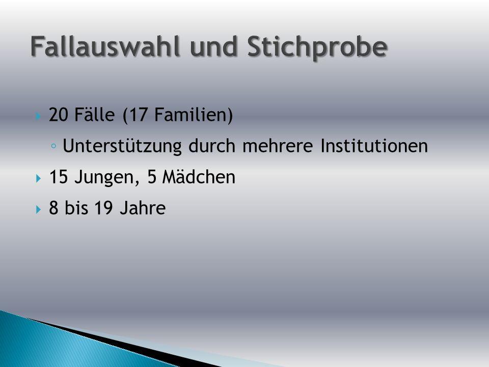 20 Fälle (17 Familien) Unterstützung durch mehrere Institutionen 15 Jungen, 5 Mädchen 8 bis 19 Jahre