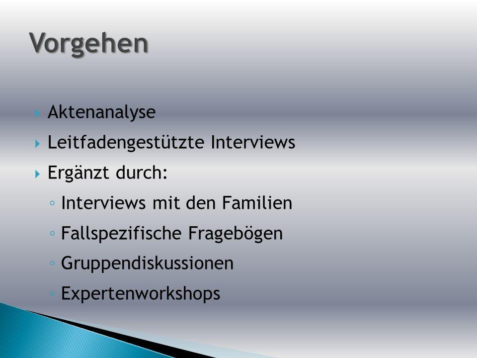 Aktenanalyse Leitfadengestützte Interviews Ergänzt durch: Interviews mit den Familien Fallspezifische Fragebögen Gruppendiskussionen Expertenworkshops