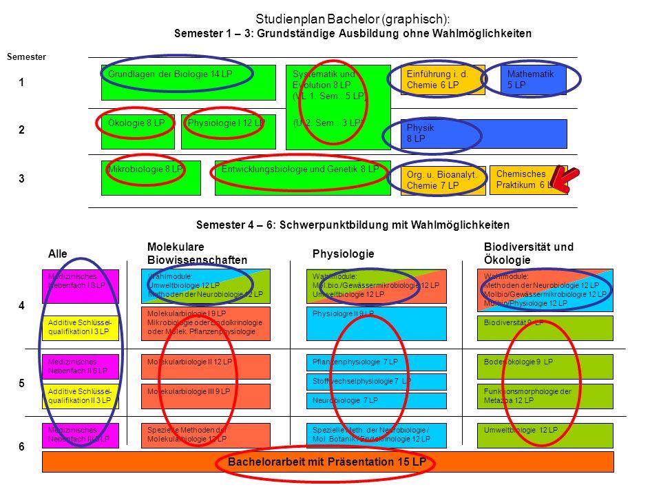 Bewertet werden: Systematik und Evolution8 LP Ökologie8 LP Mikrobiologie8 LP Physiologie I12 LP Entwicklungsbiologie und Genetik8 LP Summe:44 LP Module aus Schwerpunkt und Bachelorarbeit:57 LP Summe:101 LP Unbenotete Module, (nur Leistungsnachweis): Chemisches Praktikum6 LP Damit bleiben 180 – 101 - 6 = 73 LP von denen 56 LP herangezogen werden müssen.