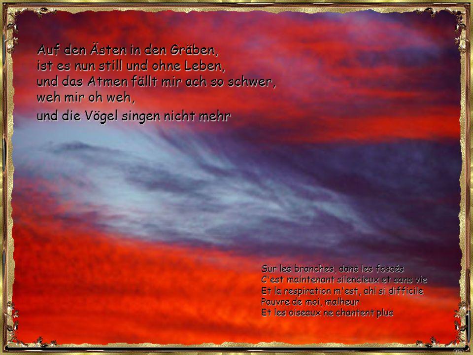 Auf den Ästen in den Gräben, ist es nun still und ohne Leben, und das Atmen fällt mir ach so schwer, weh mir oh weh, und die Vögel singen nicht mehr Sur les branches, dans les fossés C est maintenant silencieux et sans vie Et la respiration m est, ah.