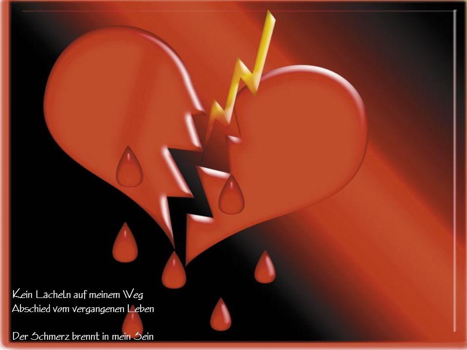 Vergebliches Leben mein Streben Mein Wille, meine Liebe, alles dahin Die Zeit vergeht, meine Erinnerung nie