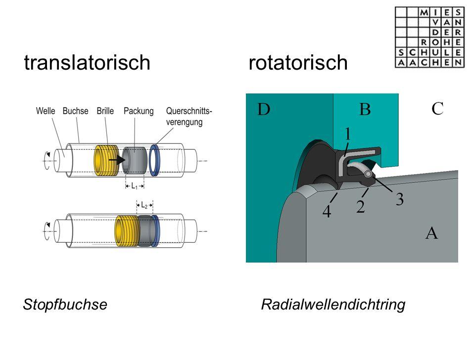 translatorisch rotatorisch Stopfbuchse Radialwellendichtring