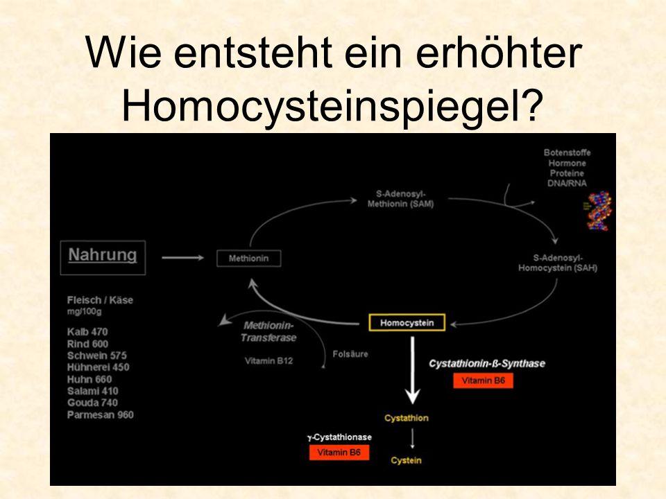 Wie entsteht ein erhöhter Homocysteinspiegel?