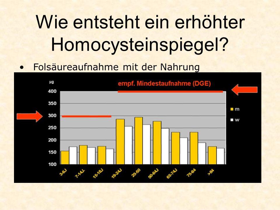 Wie entsteht ein erhöhter Homocysteinspiegel? Folsäureaufnahme mit der Nahrung
