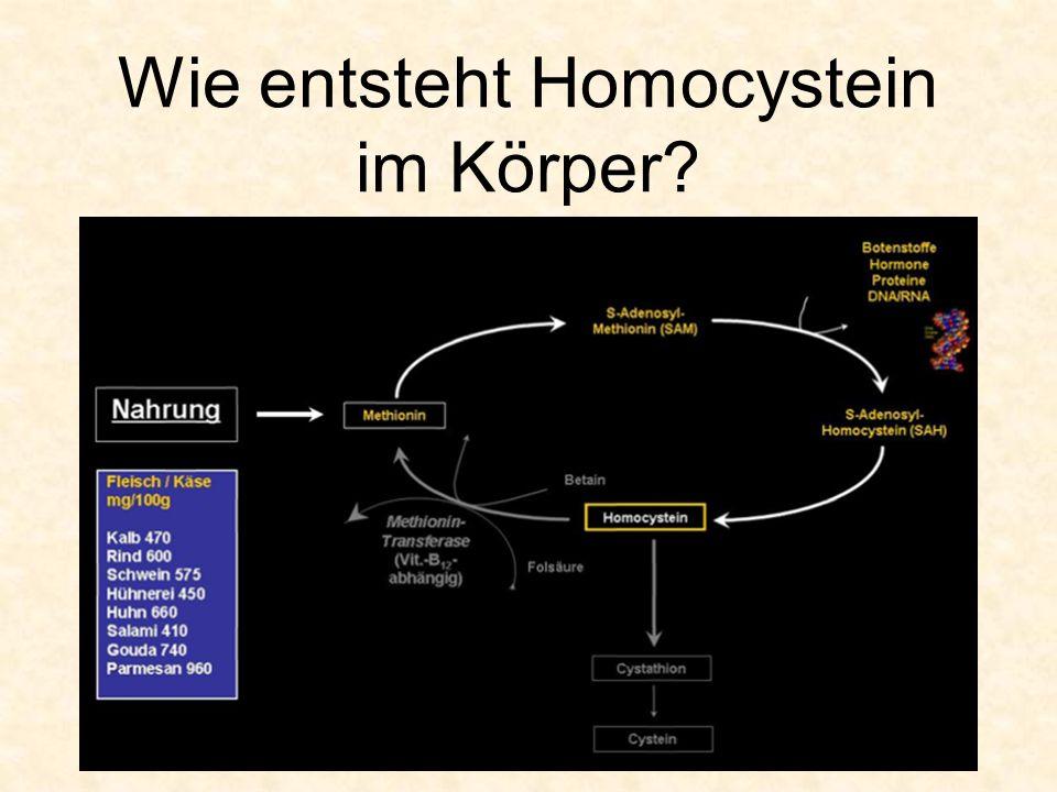 Wie entsteht Homocystein im Körper?