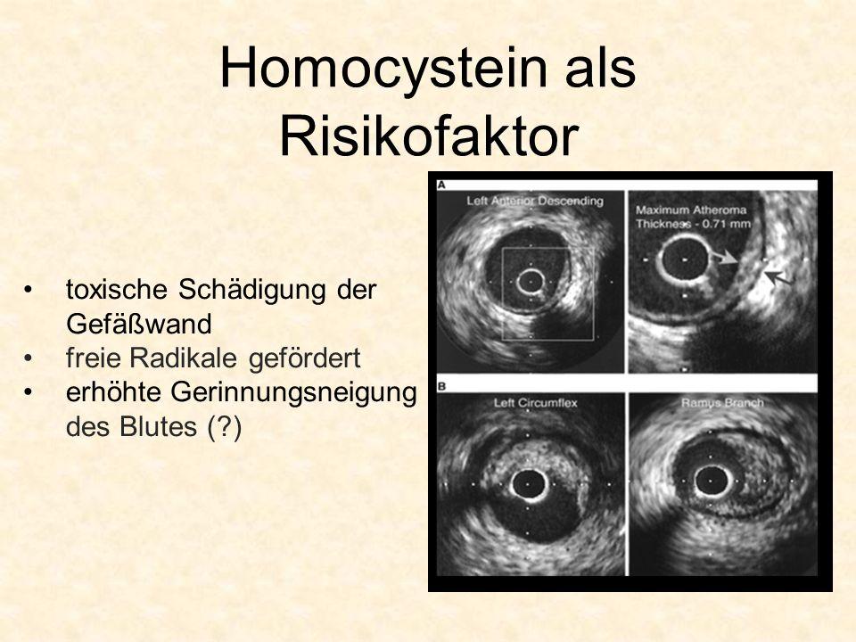 Homocystein als Risikofaktor toxische Schädigung der Gefäßwand freie Radikale gefördert erhöhte Gerinnungsneigung des Blutes (?)