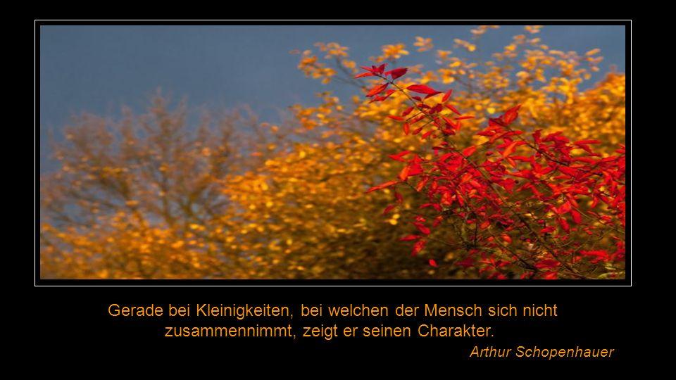 Es gibt Menschen, die sich immer angesprochen fühlen, wenn jemand eine Meinung ausspricht. Hans Christian Andersen