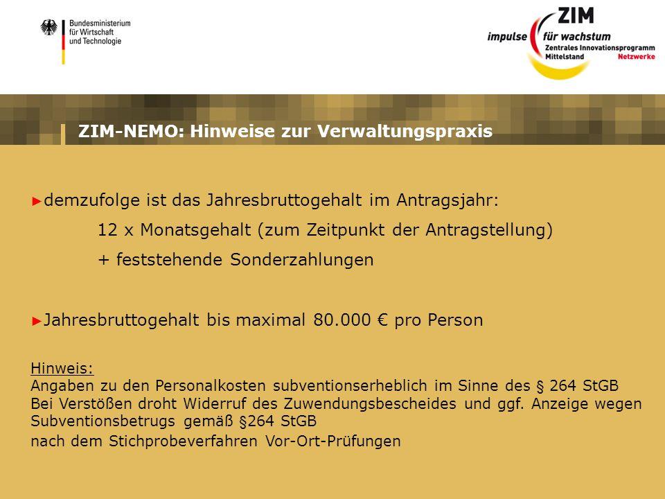 ZIM-NEMO: Hinweise zur Verwaltungspraxis demzufolge ist das Jahresbruttogehalt im Antragsjahr: 12 x Monatsgehalt (zum Zeitpunkt der Antragstellung) +