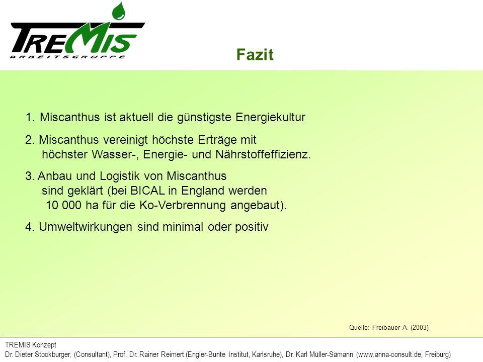 Fazit Quelle: Freibauer A. (2003) TREMIS Konzept Dr. Dieter Stockburger, (Consultant), Prof. Dr. Rainer Reimert (Engler-Bunte Institut, Karlsruhe), Dr
