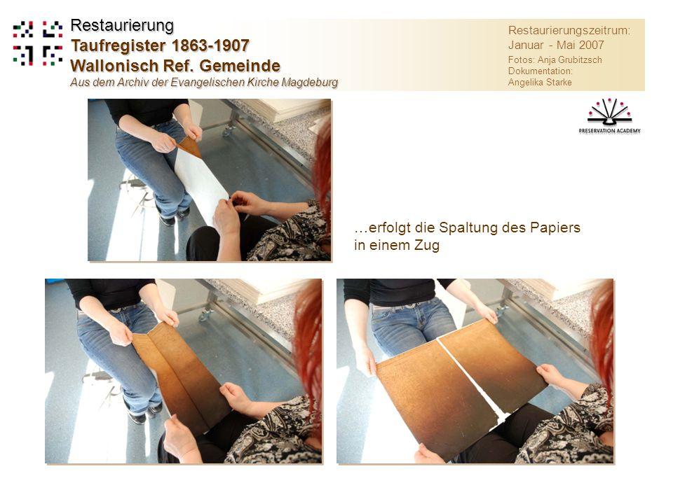 …erfolgt die Spaltung des Papiers in einem Zug Restaurierungszeitrum: Januar - Mai 2007 Fotos: Anja Grubitzsch Dokumentation: Angelika Starke Restaurierung Taufregister 1863-1907 Wallonisch Ref.