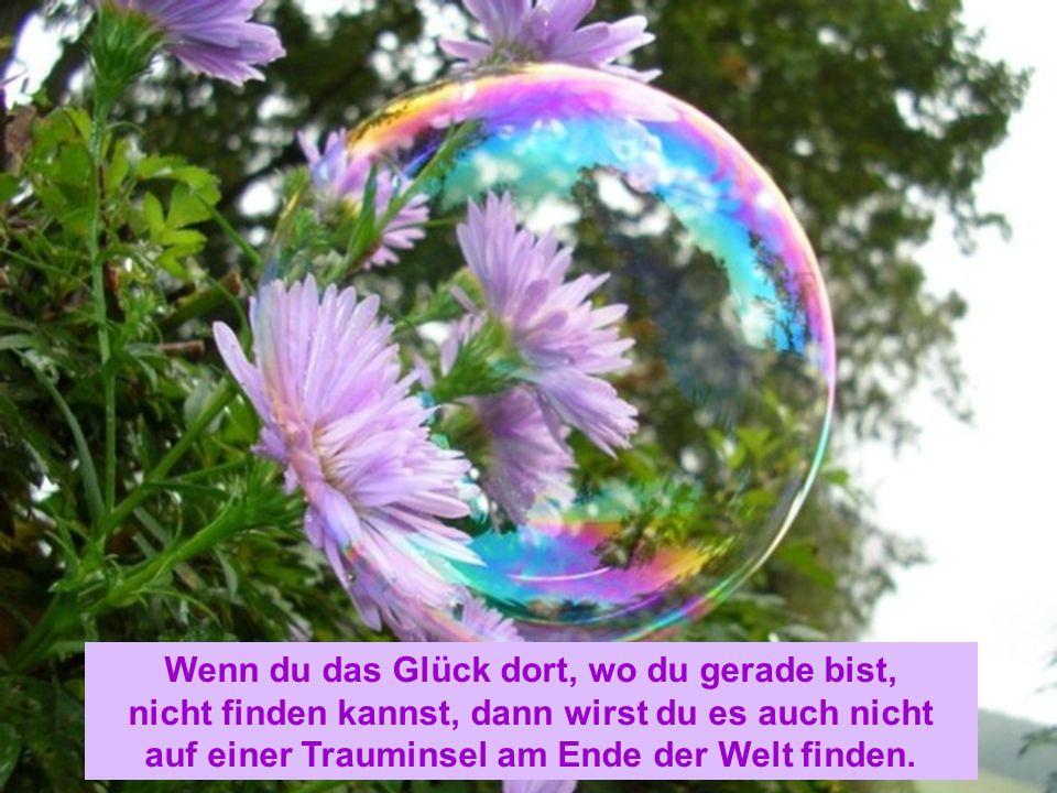 Wenn du das Glück dort, wo du gerade bist, nicht finden kannst, dann wirst du es auch nicht auf einer Trauminsel am Ende der Welt finden.