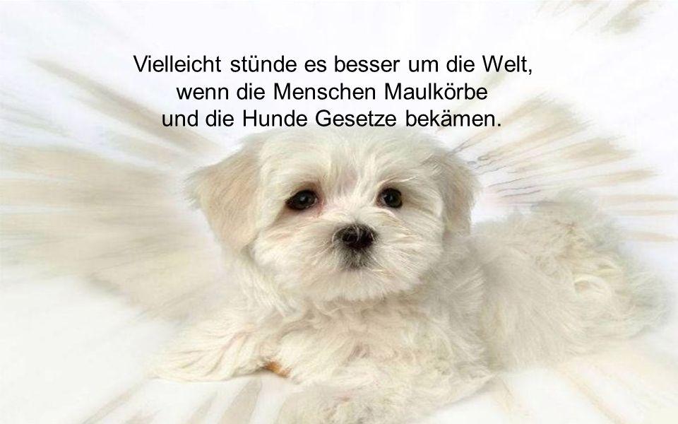 Für seinen Hund ist jeder ein Napoleon. Deshalb sind Hunde so beliebt.