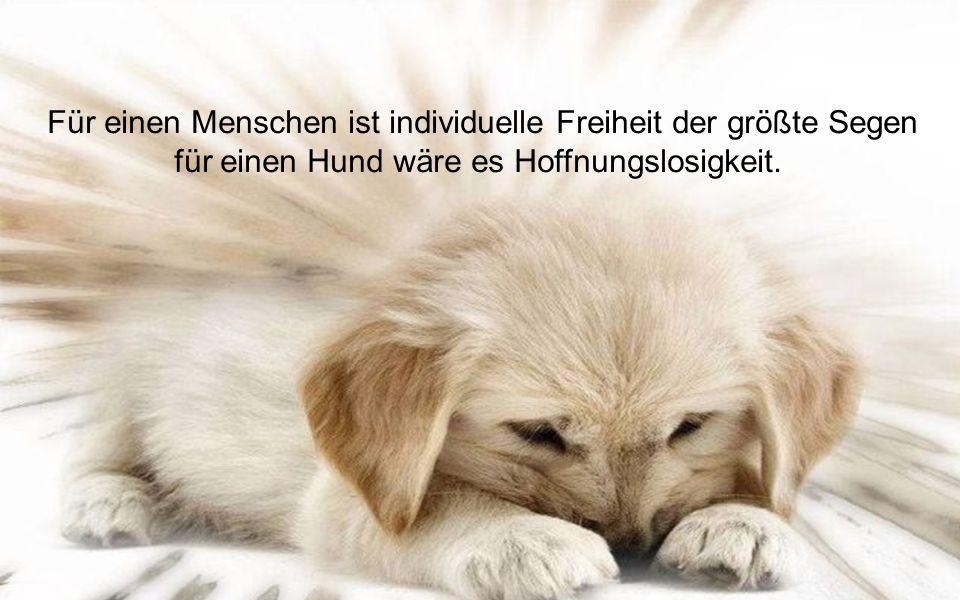 Gib einen Kind einen Hund; du gibst ihm einen treuen und loyalen Spielkameraden.