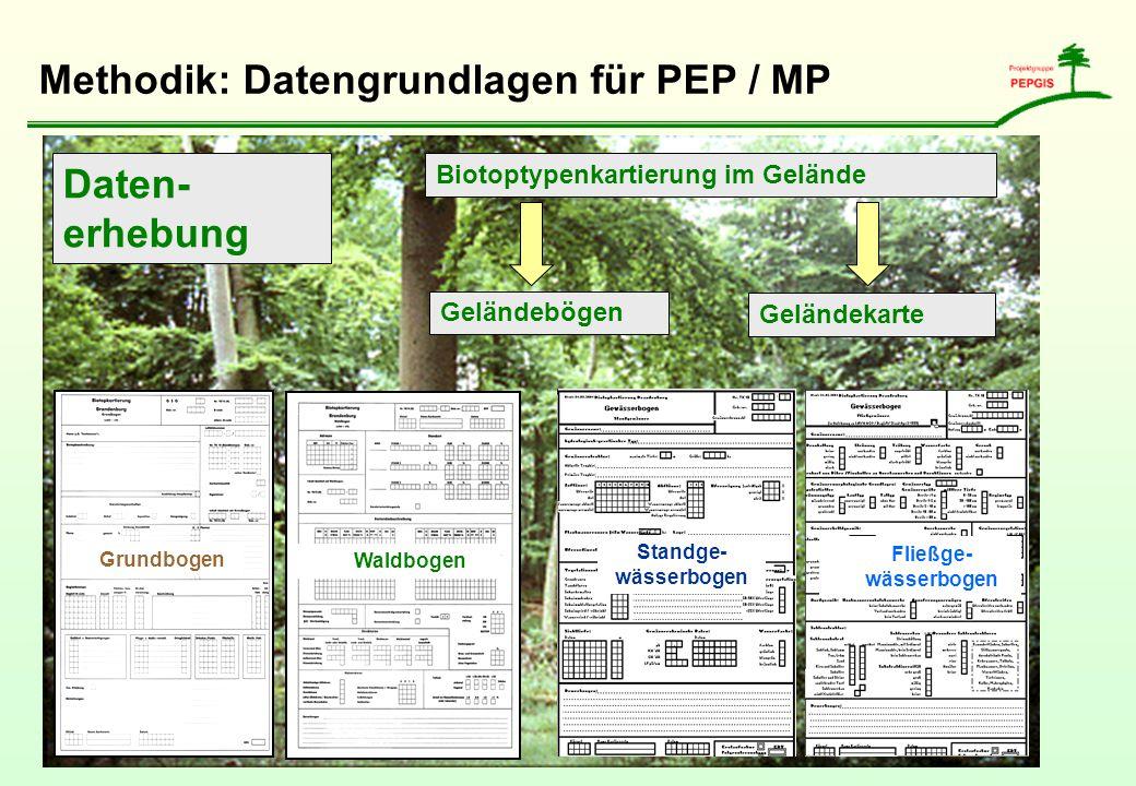 Methodik: Datengrundlagen für PEP / MP Daten- erhebung Biotoptypenkartierung im Gelände Geländekarte Geländebögen Grundbogen Waldbogen Standge- wässer