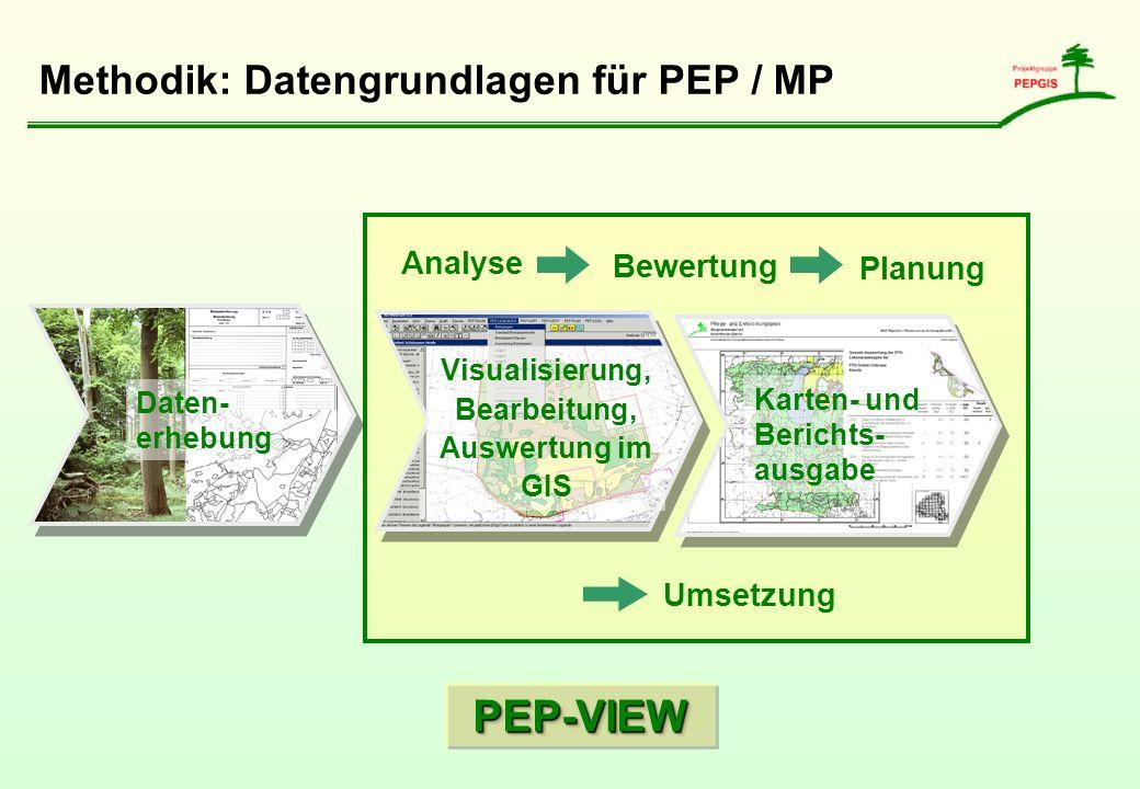 Analyse Bewertung Planung Umsetzung Methodik: Datengrundlagen für PEP / MP Daten- erhebung Visualisierung, Bearbeitung, Auswertung im GIS Karten- und