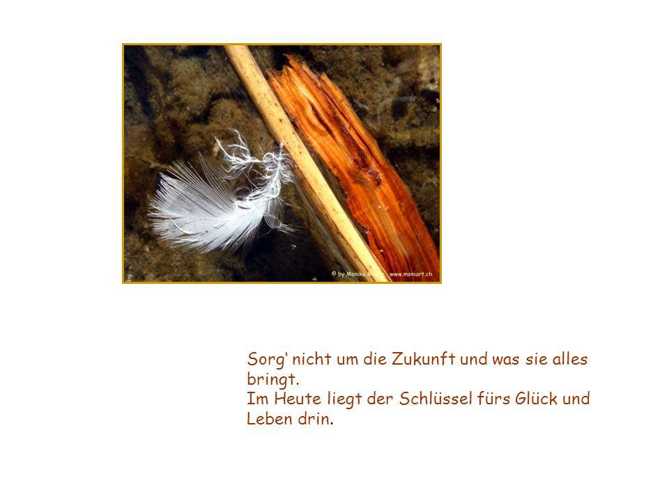AutorHeidi Sigrist-Jost ThemaErfahrungen MusikPiano Solo Theme by Alan Silvestri pps & Fotos byMonika Müller © of fotos and pps by monika müller www.moniart.ch / moni@moniart.ch www.moniart.chmoni@moniart.ch