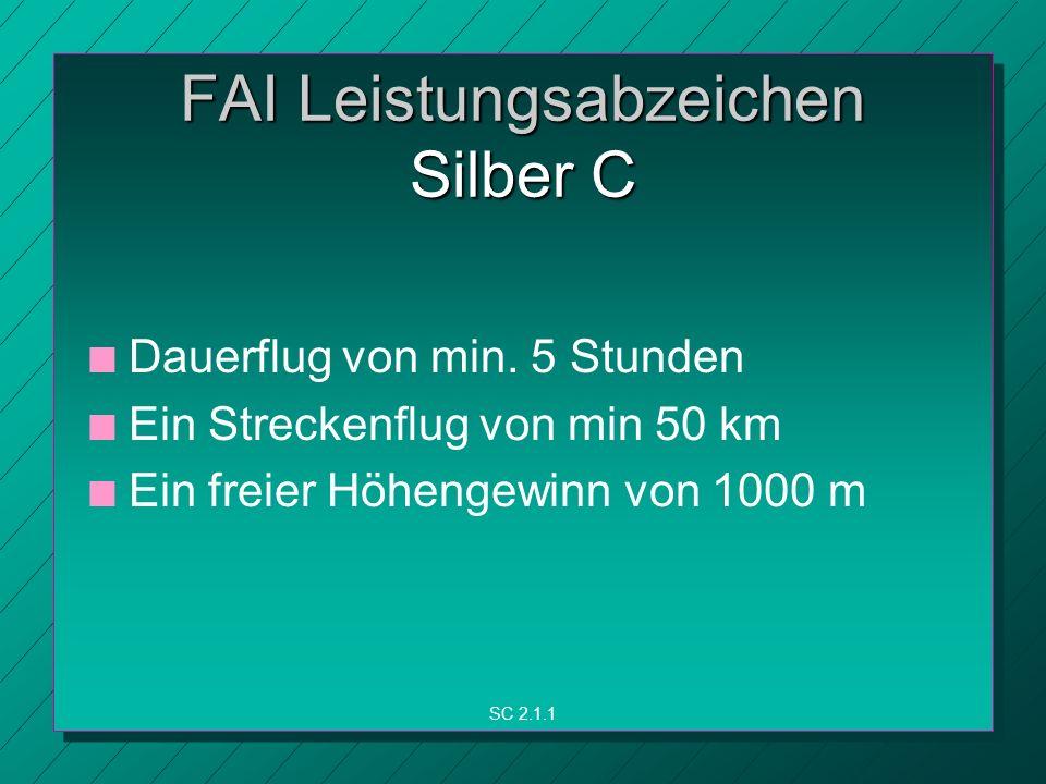 FAI Leistungsabzeichen Silber C n n Dauerflug von min.