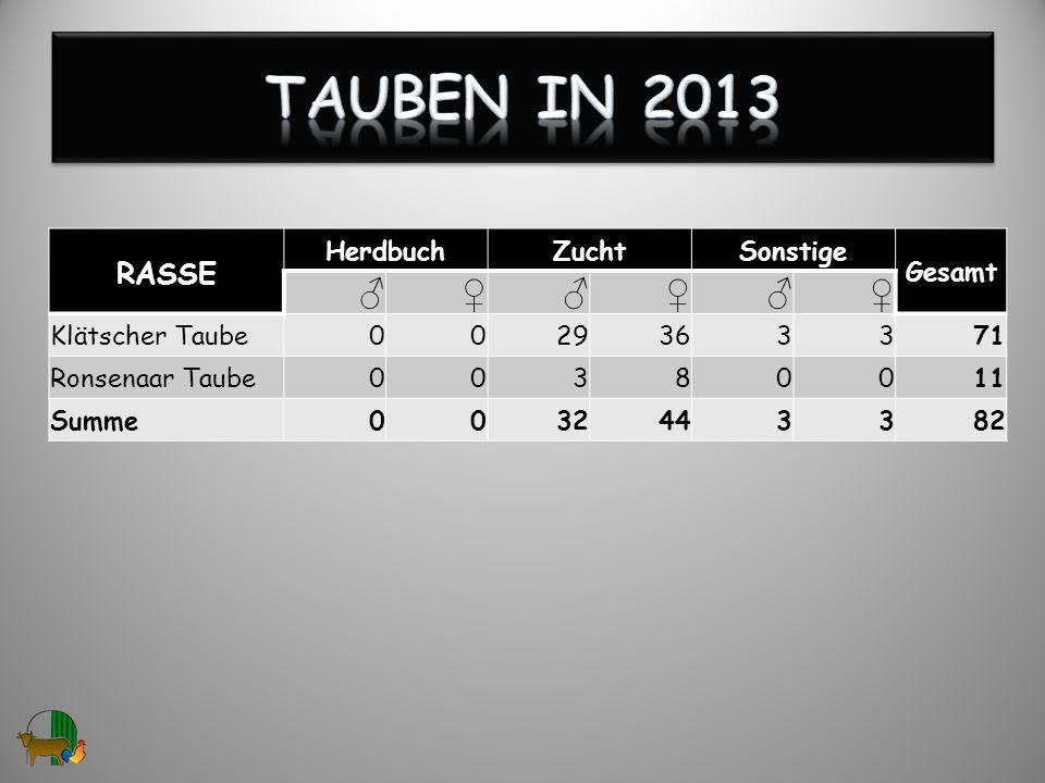 RASSE HerdbuchZuchtSonstige Gesamt Klätscher Taube0029363371 Ronsenaar Taube00380011 Summe0032443382 12