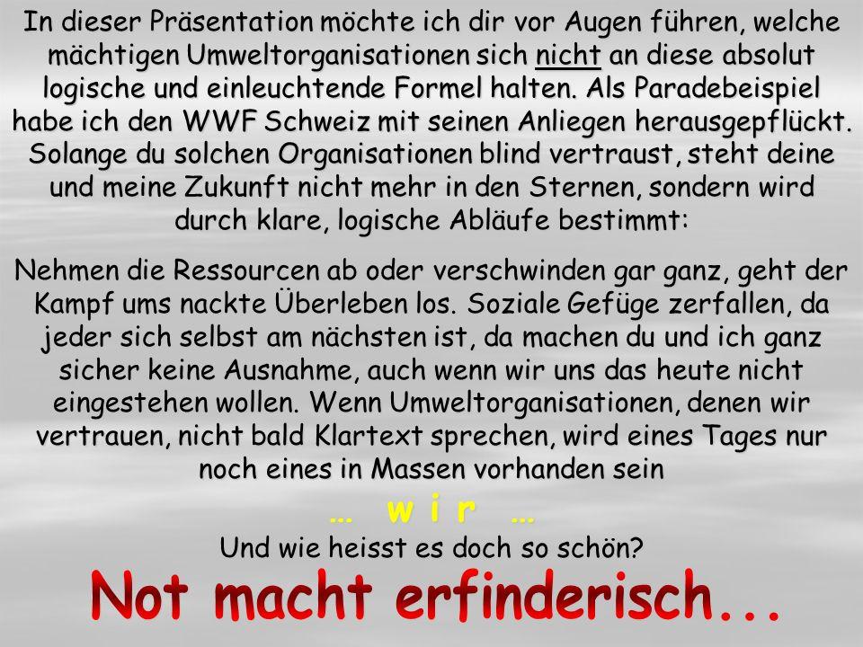 WWF «Die Wälder werden von uns schlecht behandelt.