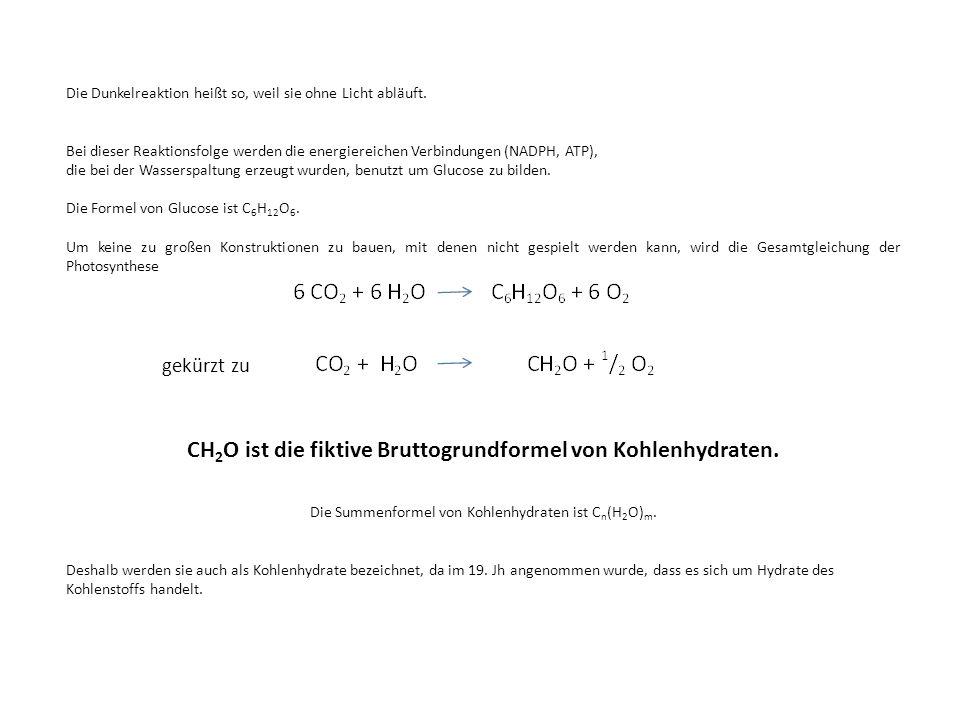Die Dunkelreaktion heißt so, weil sie ohne Licht abläuft. Bei dieser Reaktionsfolge werden die energiereichen Verbindungen (NADPH, ATP), die bei der W