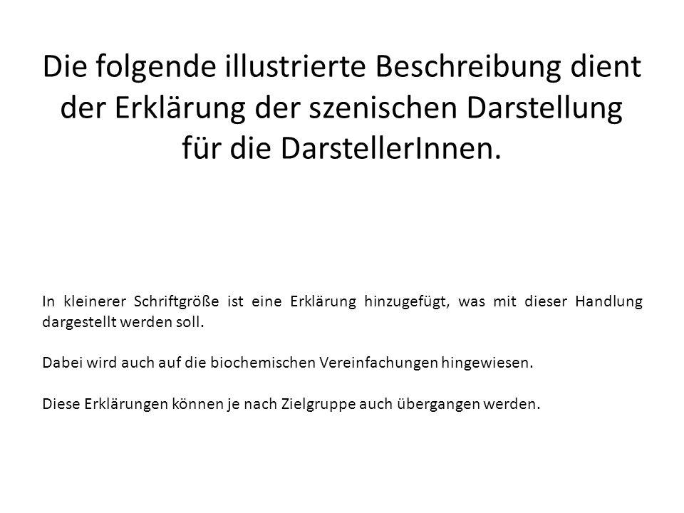 Die folgende illustrierte Beschreibung dient der Erklärung der szenischen Darstellung für die DarstellerInnen. In kleinerer Schriftgröße ist eine Erkl