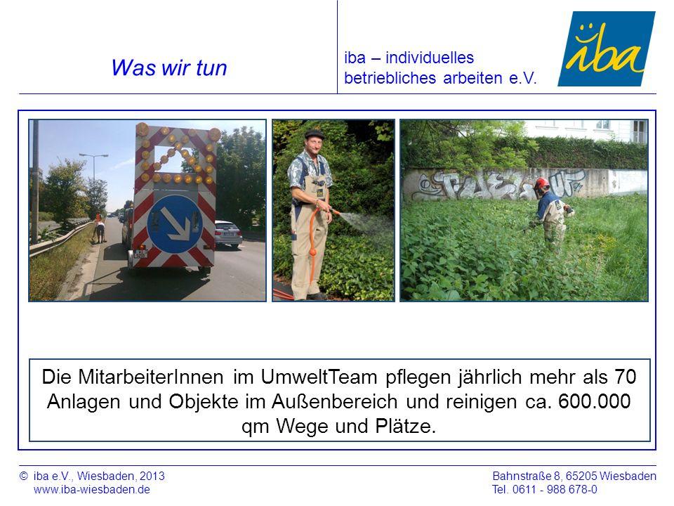 ©iba e.V., Wiesbaden, 2013 www.iba-wiesbaden.de Bahnstraße 8, 65205 Wiesbaden Tel. 0611 - 988 678-0 Was wir tun Die MitarbeiterInnen im UmweltTeam pfl