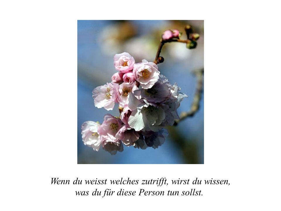 Menschen kommen in Dein Leben aus einem bestimmten Grund, für eine Weile oder für die Lebenszeit.