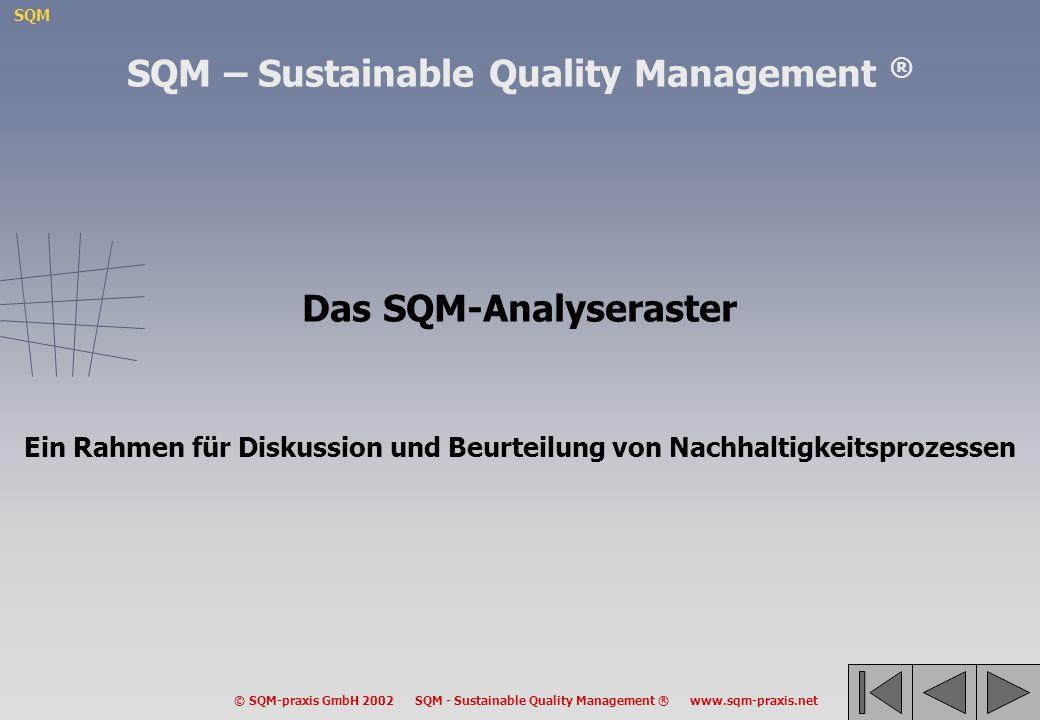 SQM © SQM-praxis GmbH 2002 SQM - Sustainable Quality Management ® www.sqm-praxis.net Das SQM-Analyseraster Ein Rahmen für Diskussion und Beurteilung v
