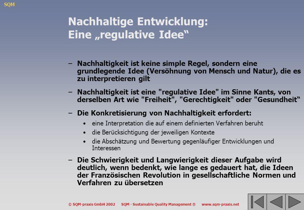 SQM © SQM-praxis GmbH 2002 SQM - Sustainable Quality Management ® www.sqm-praxis.net O1 Umwelt Stärken Attraktive Landschaft Fluss Projekt 5 3 3 Schwächen Blei-Emissionen aus...