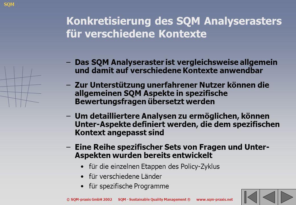 SQM © SQM-praxis GmbH 2002 SQM - Sustainable Quality Management ® www.sqm-praxis.net Konkretisierung des SQM Analyserasters für verschiedene Kontexte