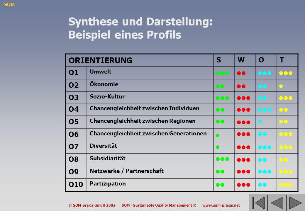 SQM © SQM-praxis GmbH 2002 SQM - Sustainable Quality Management ® www.sqm-praxis.net Synthese und Darstellung: Beispiel eines Profils ORIENTIERUNG SWO