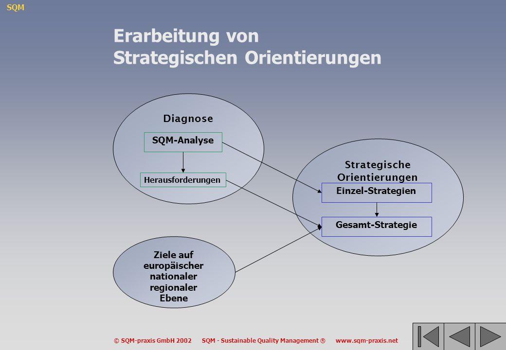 SQM © SQM-praxis GmbH 2002 SQM - Sustainable Quality Management ® www.sqm-praxis.net Strategische Orientierungen Diagnose Ziele auf europäischer natio