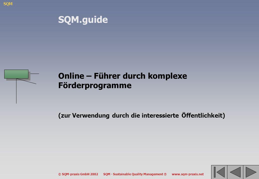 SQM © SQM-praxis GmbH 2002 SQM - Sustainable Quality Management ® www.sqm-praxis.net Online – Führer durch komplexe Förderprogramme (zur Verwendung du