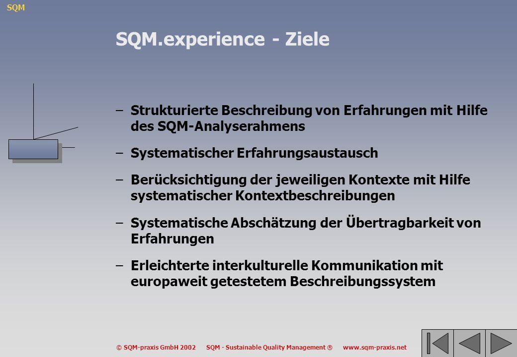 SQM © SQM-praxis GmbH 2002 SQM - Sustainable Quality Management ® www.sqm-praxis.net –Strukturierte Beschreibung von Erfahrungen mit Hilfe des SQM-Ana