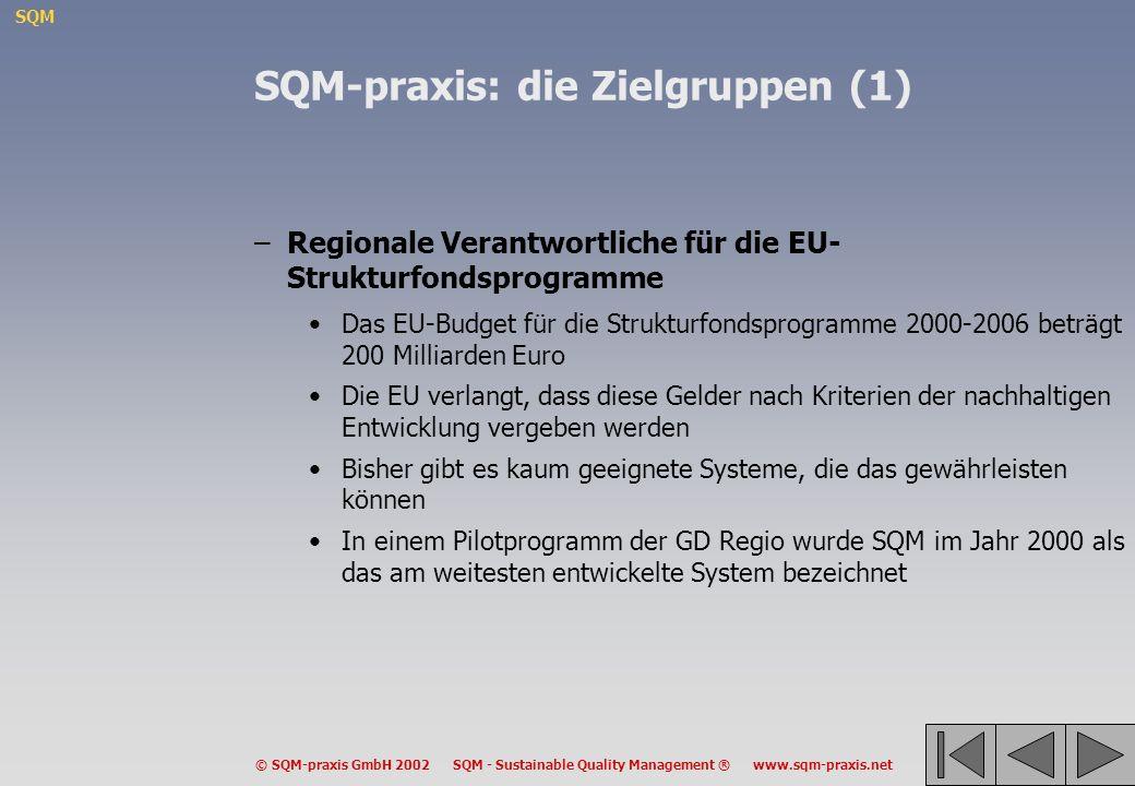 SQM © SQM-praxis GmbH 2002 SQM - Sustainable Quality Management ® www.sqm-praxis.net SQM-praxis: die Zielgruppen (1) –Regionale Verantwortliche für di