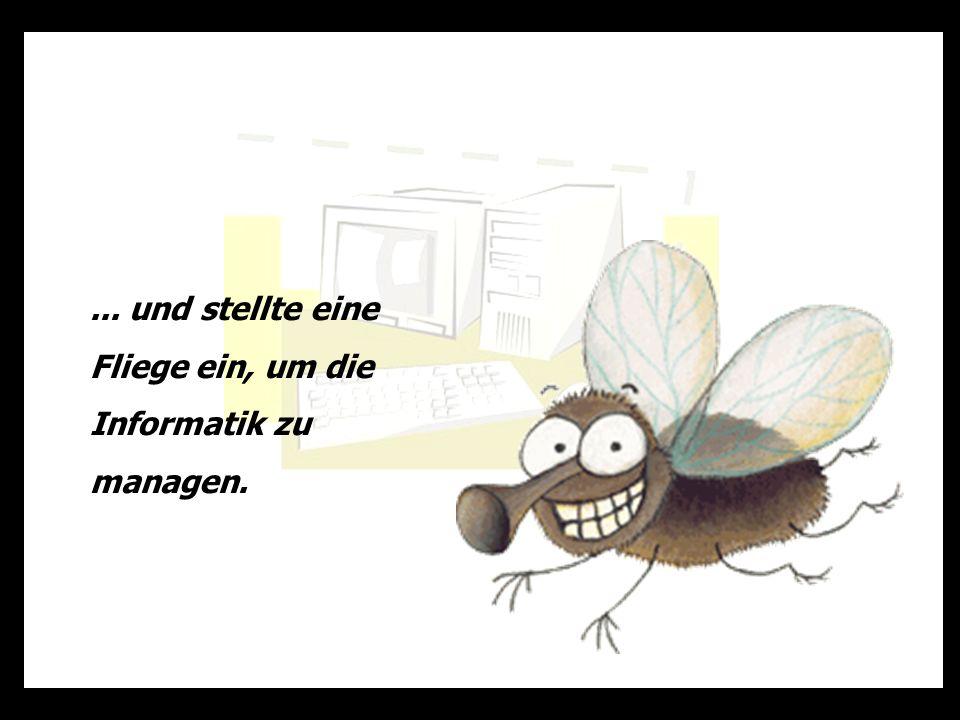 ... und stellte eine Fliege ein, um die Informatik zu managen.