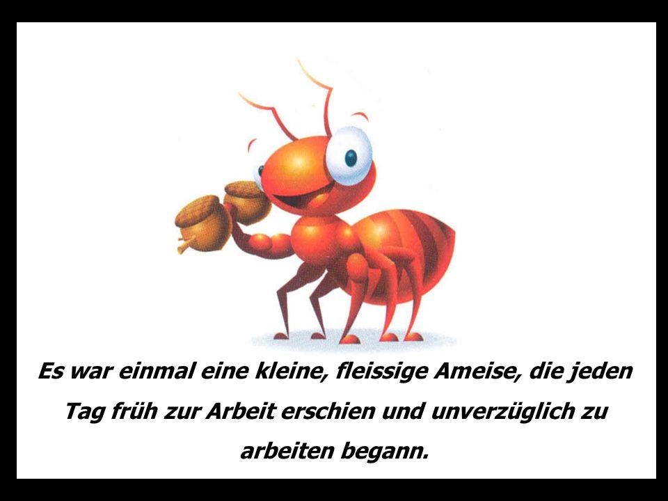 Es war einmal eine kleine, fleissige Ameise, die jeden Tag früh zur Arbeit erschien und unverzüglich zu arbeiten begann.